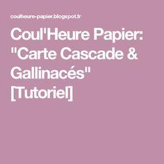 "Coul'Heure Papier: ""Carte Cascade & Gallinacés"" [Tutoriel]"