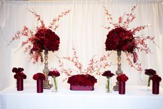 red centerpiece of red orchids red roses and red carnations