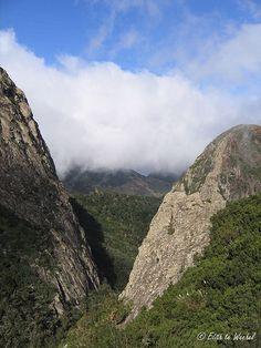Parque Nacional de Garajonay, La Gomera  Spain