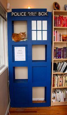 The Experimental Crafter: Kitty TARDIS