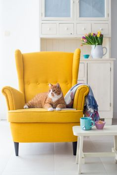 Yellow Ottoman Ikea – All Home Patio Yellow Ottoman, Yellow Armchair, Yellow Couch, Ikea Yellow Chair, Yellow Desk, Yellow Dining Room, Yellow Accent Chairs, Accent Chairs For Living Room, White Chairs
