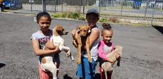 EFRC sponsored another vaccination and deworming day on Saturday 20th October 2018 for the Grabouw community. With the fantastic work from the vets at Grabouw Animal Clinic we were able to attend to 47 Dogs, 1 cat and we booked more sterilizations with Michelle and her team.  Once again huge thanks to Michelle and all the staff at the Grabouw Animal Clinic. Animal Clinic, Pet Clinic, October, Thankful, Community, Cats, Books, Animals, Gatos