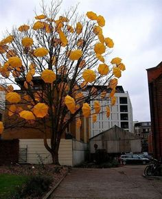 umbrellas as street art