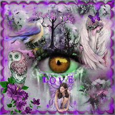 Image result for Purple Magic PicMix
