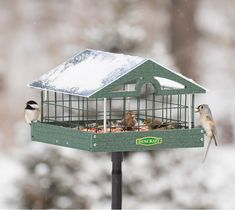 Pavilion Haven Feeder, Pole Mount: Our special haven wire caging allows songbirds to feed in peace! Chickadees, redpolls, titmice and others can easily enter through the safe 1-1/2 inch wire grid openings, while remaining out of reach from blackbirds, doves, pigeons and squirrels. Made in the USA