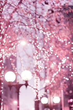 Twinkling lights on a blushing evening sky backdrop