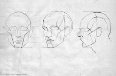 2 of 9 Gurney Journey: Plane Heads. Fred Fixler  ( http://www.fredfixler.com/ ), a student of famed Art Students League instructor Frank Reilly, came up with a slightly different plane breakdown for an idealized male head. There are some rounded forms too. The cranium is a ball with the sides sliced off.
