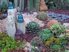 Plantes grasses et sols décoratifs.