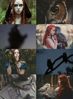 #OwlWitch #WitchAesthetic #Aesthetic #Witch #AnimalWitch #Witches #magic #owls #tarotcards #forest #night #owleye #nightowl #bird #redhead #witchcraft #pagan #request #feathers - www.thepaganwitch.com
