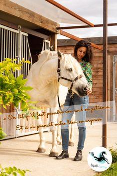 Confiance, complicité, détente, bien-être Shiatsu, Horses, Health Club, Confidence, Horse