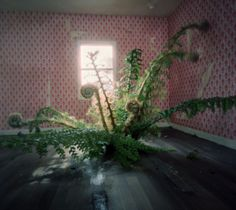 So freaking cool! - Precarious Rooms by Jan Dunning