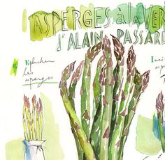 "Bunch of asparagus ""Stand up asparagus"" recipe from french chef Alain Passard. Archival giclee reproduction print from watercolor painting with french handwritting. Printed on beau Green Kitchen Decor, Kitchen Art, Watercolor Print, Watercolor Paintings, Watercolors, Food Illustrations, Illustration Art, Vegetable Prints, Sunflower Art"