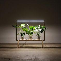 étagère porte-plante cadre photo minimaliste eclairage led integre #green #interiors #plants