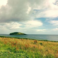 Looe Island #looe #cornwall #landscape #photography #walkswithethel
