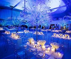 Finding the perfect wedding reception venue is probably going to be one of your top priorities in the wedding planning process. Wedding Reception Venues, Wedding Reception Decorations, Wedding Themes, Uplighting Wedding, Royal Blue Wedding Decorations, Parties Decorations, Reception Dresses, Backdrop Wedding, Themed Weddings