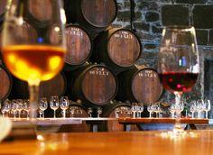 Porto.  Port wine tasting!