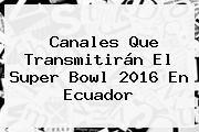 http://tecnoautos.com/wp-content/uploads/imagenes/tendencias/thumbs/canales-que-transmitiran-el-super-bowl-2016-en-ecuador.jpg Super Bowl 2016. Canales que transmitirán el Super Bowl 2016 en Ecuador, Enlaces, Imágenes, Videos y Tweets - http://tecnoautos.com/actualidad/super-bowl-2016-canales-que-transmitiran-el-super-bowl-2016-en-ecuador/