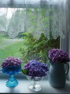 Hydrangea in country window
