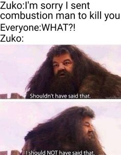 Avatar The Last Airbender Funny, The Last Avatar, Avatar Funny, Avatar Airbender, Atla Memes, Dc Memes, Funny Memes, True Memes, Stupid Memes