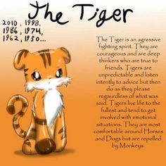 Chinese Astrology - The Tiger