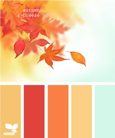 autumn breeze - colour palette via design seeds Colour Pallette, Color Palate, Colour Schemes, Color Patterns, Color Combinations, Paint Schemes, Design Seeds, Autumn Inspiration, Color Inspiration
