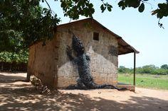 Mooi overzicht van de laatste werken van ROA in Mexico, Cambodia + Gambia - unurth | street art