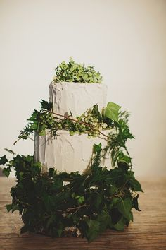 Wedding cake decorated with ivy | Jiaheng and Adelene's Woodsy Wedding in Melbourne