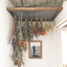 Home Decoration Ideas For Diwali .Home Decoration Ideas For Diwali Deco Floral, Drying Herbs, Cozy House, Cheap Home Decor, My Dream Home, Dried Flowers, How To Dry Flowers, Home Remodeling, Sweet Home
