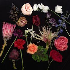 Floral-Event-Design-Louisville-Kentucky-9.JPG