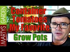 Container Tomato Garden My Favorite Pots Video    Watch the video and see which I believe to be the best containers for growing Tomatoes at home!