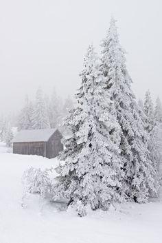 Winter mood (by sverre.vassbotn)