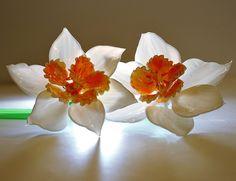 Murano Glass oh so beautiful Image  by avraham bank