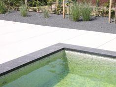 Garden, Outdoor Decor, Home Decor, Garten, Decoration Home, Room Decor, Lawn And Garden, Gardens, Gardening
