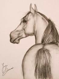 Realistic animal drawings, drawing animals, drawings, animal sketches, p Horse Drawings, Pencil Art Drawings, Art Drawings Sketches, Cute Drawings, Horse Pencil Drawing, Pencil Sketching, Pencil Shading, Art Illustrations, Arte Equina