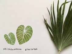 Philodendron gloriosum leaf set of 2 hand carved rubber stamp botanical stamps Palm Tattoos, Wooden Handles, Hand Carved, Carving, Nature, Plant Leaves, Notes, Ink, Etsy