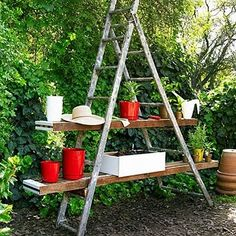 potting station made of an old ladder.... easy and economical!