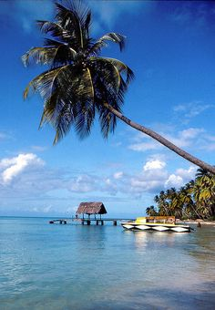 If a quite beach somewhere private is just your thing, check out the Caribbean. Pigeon Point #Tobago