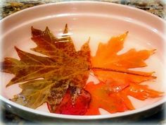 Preserving fall leaves. I'd like to try this with the four leaf clovers I find...