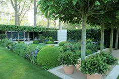 Modern klassieke tuin met gazon, dakbomen en buxusbollen. Het moderne meubilair en de weelderige beplanting zorgen voor zowel een moderne en natuurlijke toevoeging.