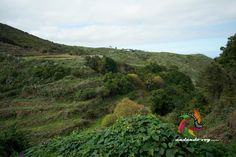 Barranco de Cabezadas  #hikingtenerife #canarias #tenerifesenderos  #senderismo #trekking #hiking #hike #sky  #nature #outdoor