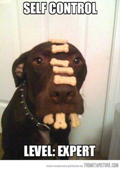 Advanced self-control…if only I had that kind of willpower!