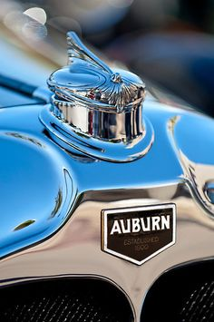 1929 Auburn 8-90 Speedster Hood Ornament 1 by Jill Reger***Research for possible future project.
