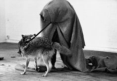 Joseph Beuys, 'I like America and America likes me' at René Block Gallery (With Coyote)
