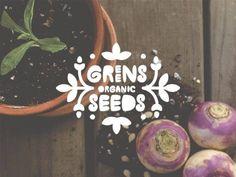 Greens Organic Seeds Logo Development by Maddie Starke at Ginger Snap Design #organic #logodesign