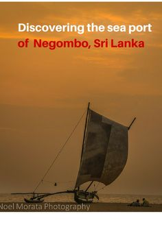 Highlight tour of the main attractions and landmarks to the sea port of Negombo in Sri Lanka
