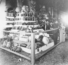 fruits and vegetables 1000 images about roots oregon history on 12476