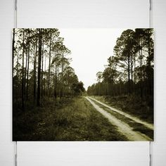 Forest Road Photograph - Not All Who Wander Are Lost - Signed Fine Art Print