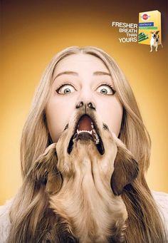 Publicité - Creative advertising campaign - Pedigree: Fresher breath than yours Clever Advertising, Advertising Poster, Advertising Campaign, Advertising Design, Marketing And Advertising, Advertisement Examples, Guerilla Marketing, Street Marketing, Photoshop