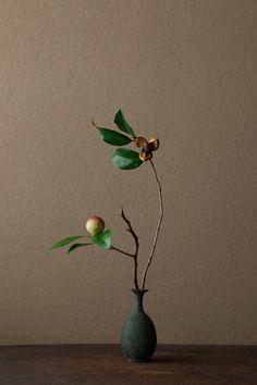 jwstudio: Kawase Toshiro, ikebana. Camellia. Ha, ha its not a flower-- its a seed.