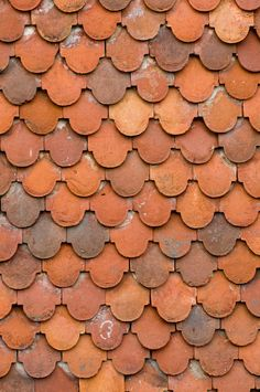 Roof tiles over garden in southwest England, showing the varying colors of the clay. This tile pattern has been used for over 400 years. Robertsbridge, England, June